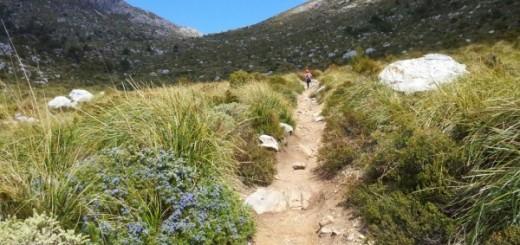 Trail de Tramuntana