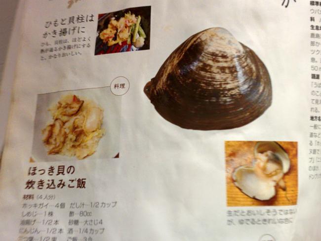 Llibre de peixos i moluscos