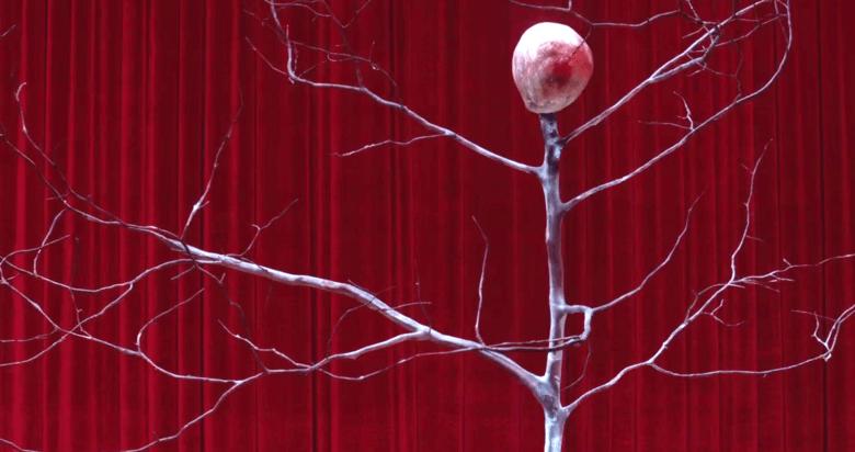 El nan que es converteix en arbre